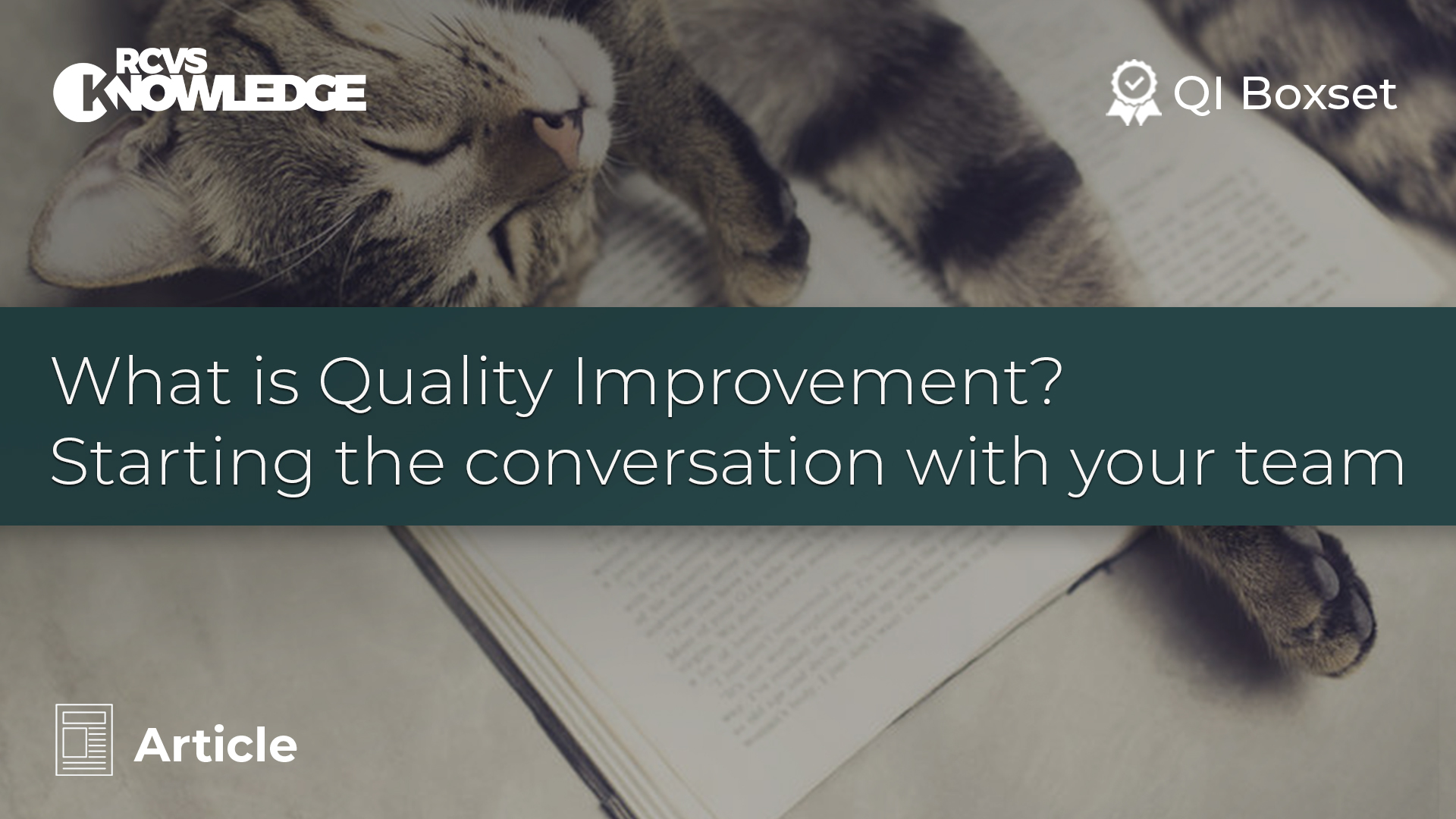 What is Quality Improvement? Starting the conversation with your team