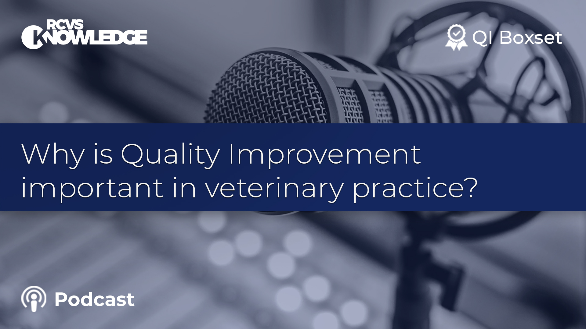 Why is Quality Improvement important in veterinary practice?