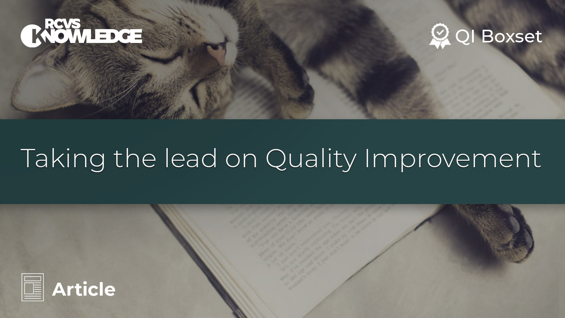Taking the lead on Quality Improvement