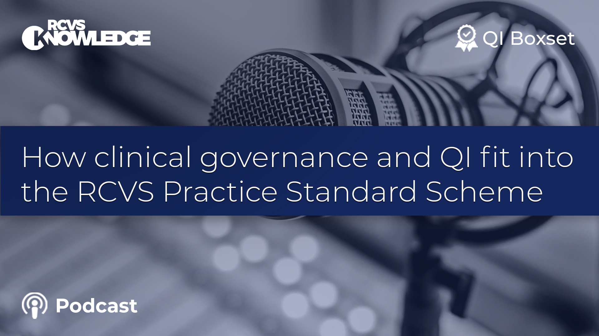 How clinical governance and Quality Improvement fit into the RCVS Practice Standards Scheme