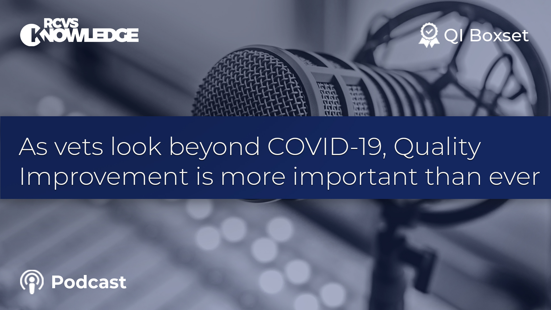 As vets look beyond COVID-19, QI is more important than ever