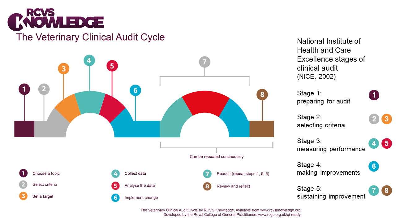 Veterinary clinical audit cycle