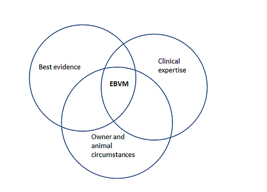 Venn diagram showing best evidence, clinical expertise and owner and animal circumstances. The intersection of the 3 sets is EBVM.
